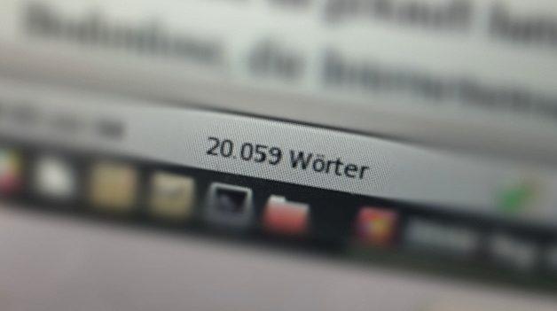"""Mein dritter Bericht zum Stand meines Romanprojekts """"2040"""""""