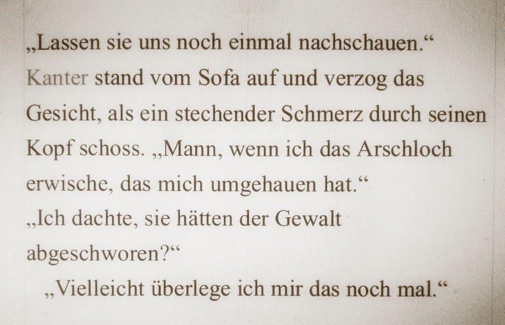 """Mein siebter Bericht zum Stand meines Romanprojekts """"2040"""""""